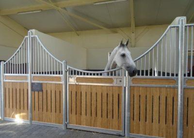loddon stables (23)
